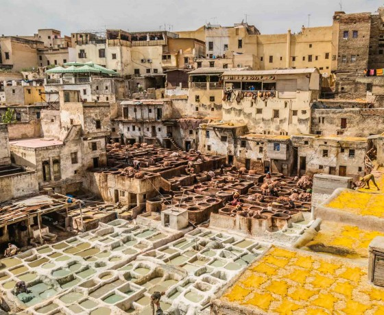 Fes excursions and tours